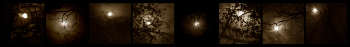 "© Lisa Mauer Elliott, ""Study of the Moon"""